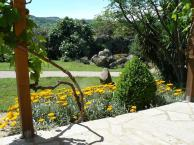 View across the garden in May