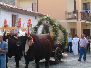 Festa di Sant Isodoro (St Patron of the farmers) , 31st of August.